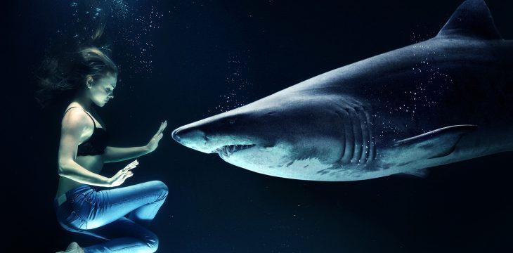 Freediving – poczuj się jak ryba