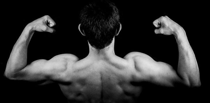 Dlaczego nie udaje Ci się budować mięśni?